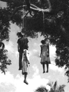 Hanging from Trees