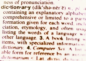 Dictionary People1a